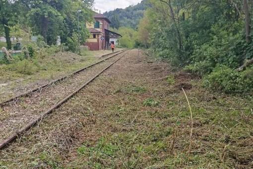 """Gavazza (Lega Salvini Piemonte): """"Avviata ripulitura e bonifica della tratta Chivazzo-Brozolo"""""""