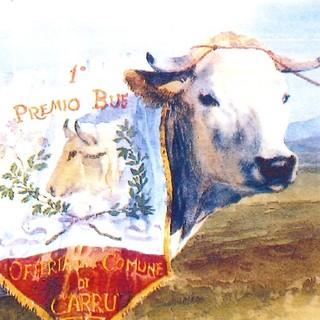 Fiera Nazionale del Bue Grasso il 10 dicembre a Carru'