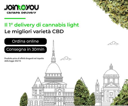 JoinToYou, una giovane azienda bolognese protesa ai vertici della distribuzione della Marijuana Legale in Italia grazie al delivery