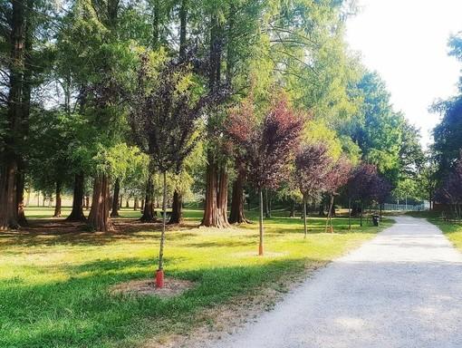 Mercoledì 9 si svolgerà la Fiera Agricola del Beato Angelo Carletti al Parco Mauriziano
