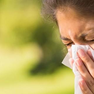 Piemonte: il caldo e la siccità fanno esplodere precocemente le reazioni allergiche ai pollini