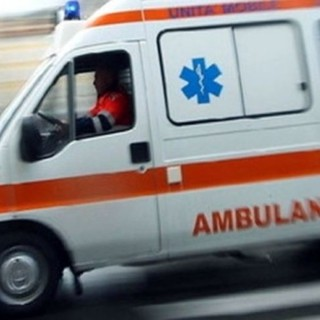 Auto contro cinghiale sulla A5, ferito un 33enne