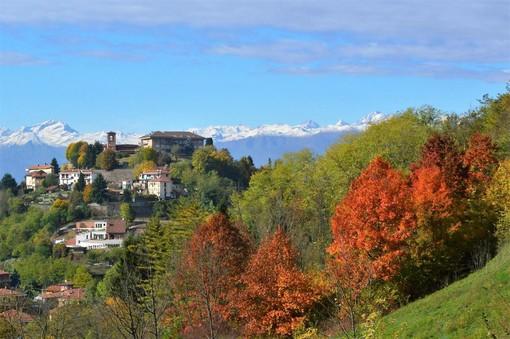"""Castiglione - San Mauro: nasce """"Boschi dei Bric"""" per la valorizzazione del patrimonio boschivo"""