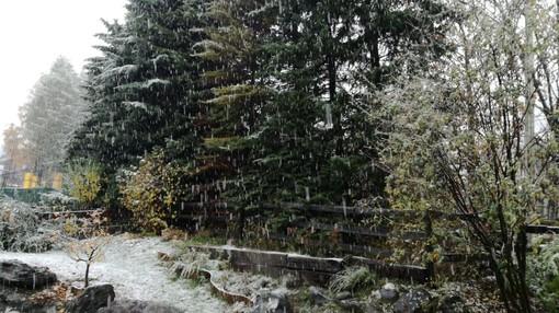 È arrivata la neve: stamattina primi fiocchi in alta Valle di Susa e alta Val Chisone [VIDEO]