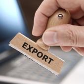 """timbro con la scritta """"export"""" sui fogli"""