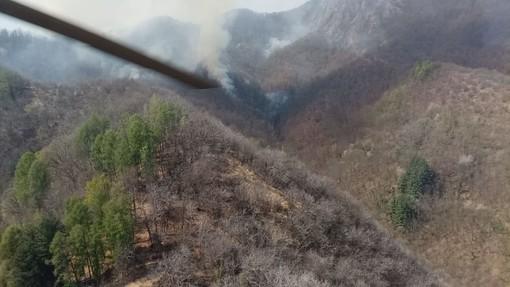 Da domani in tutto il Piemonte proclamato lo stato di massima pericolosità per gli incendi boschivi