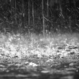 Su Torino e provincia calano le temperature fino a 16°, da venerdì aumentano i rovesci